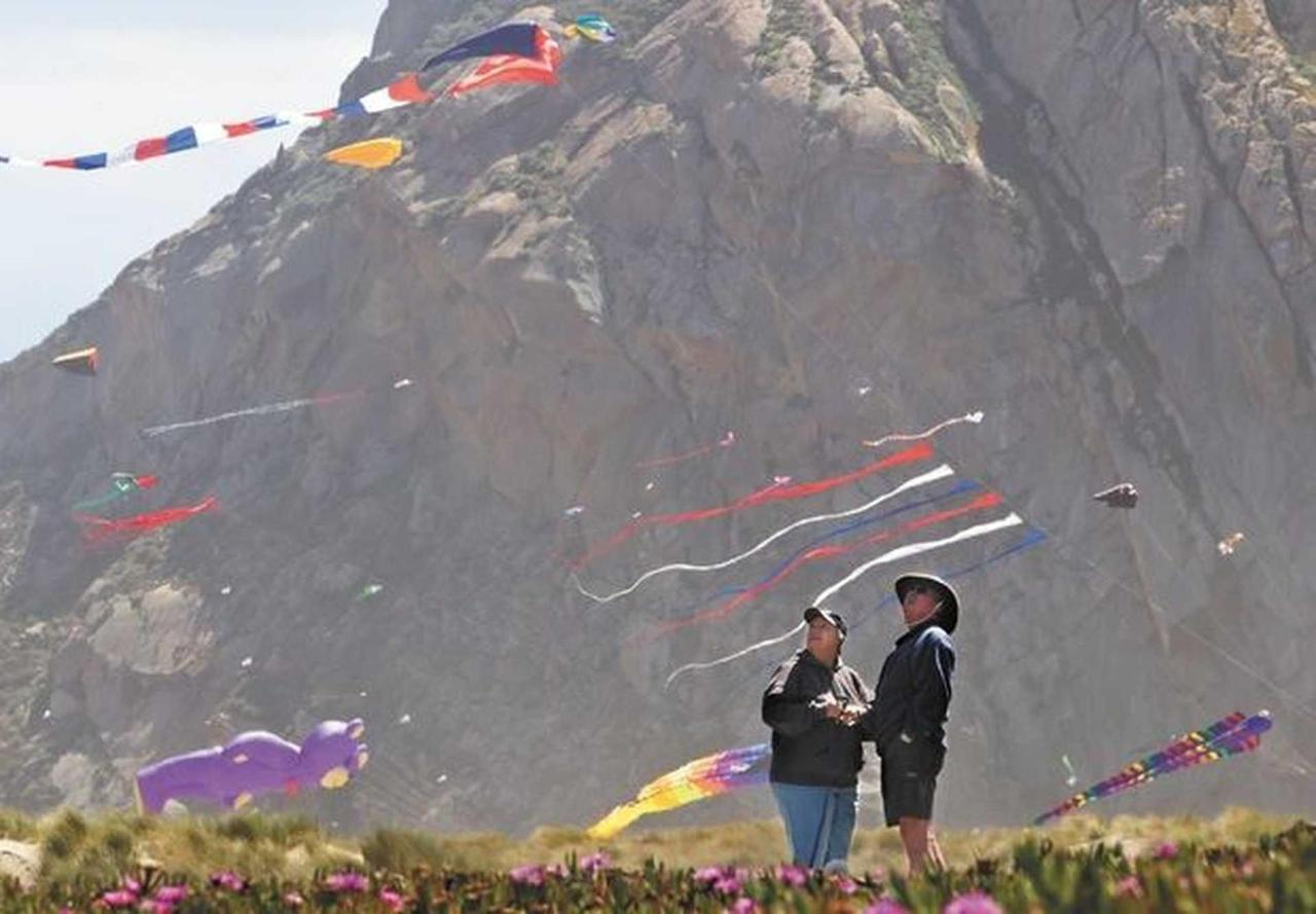 kite-pic-4.jpg.1920x0.jpg