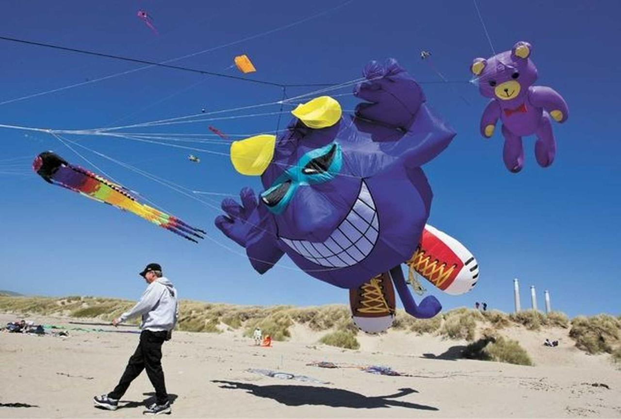 kite-pictures.jpg.1920x0.jpg
