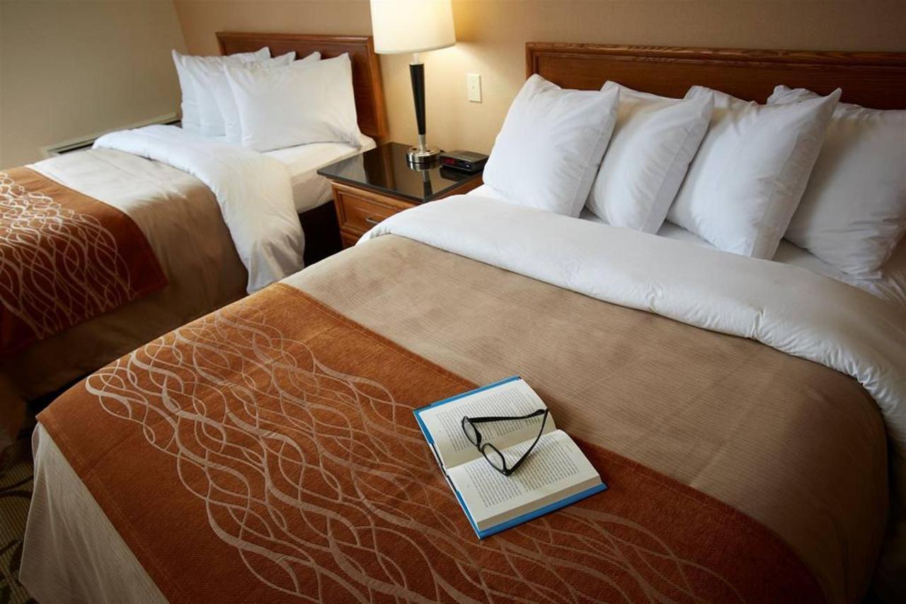 enjoy-some-bedtime-reading.jpg.1024x0.jpg