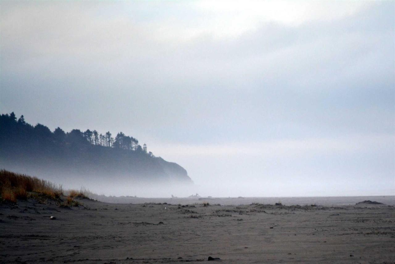 beach1.jpg.1920x0.jpg