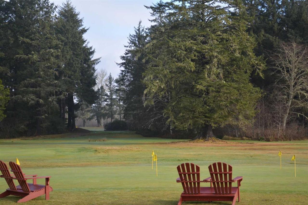 golf3.jpg.1920x0.jpg