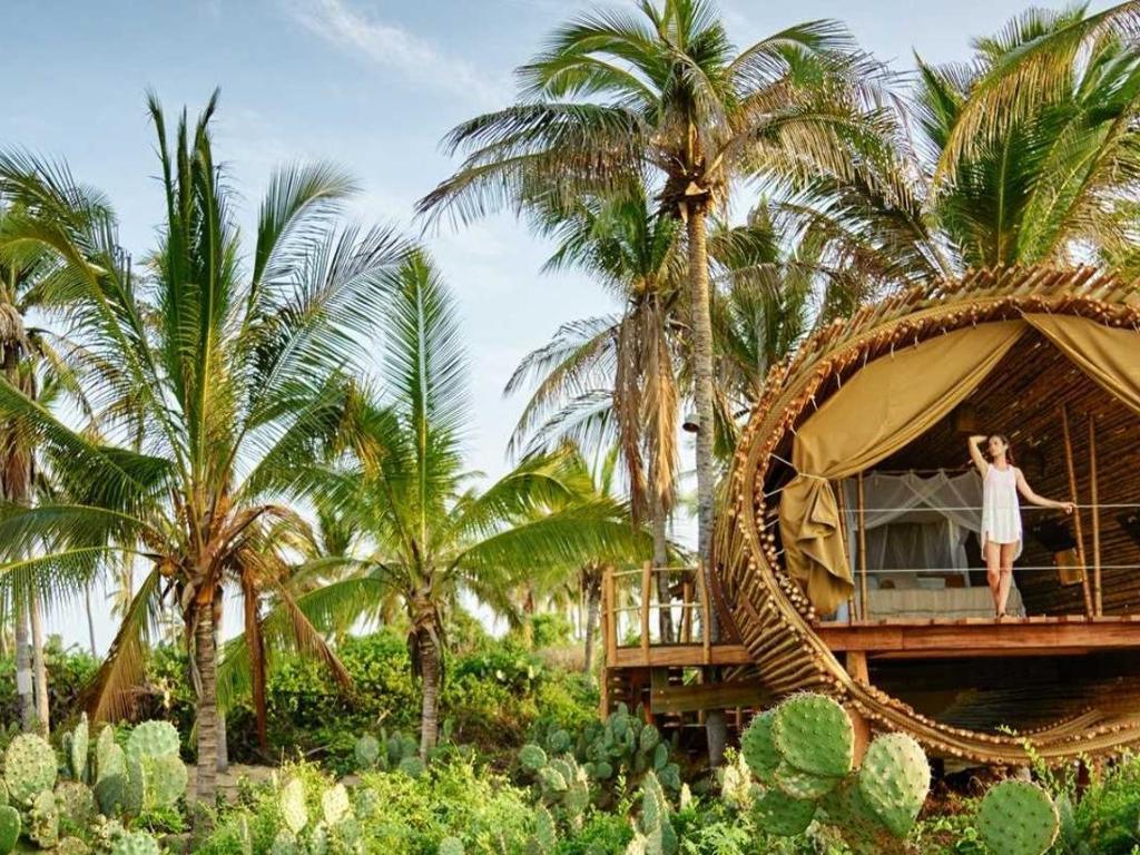 Treehouse Playa Viva hotel Juluchuca Mexico