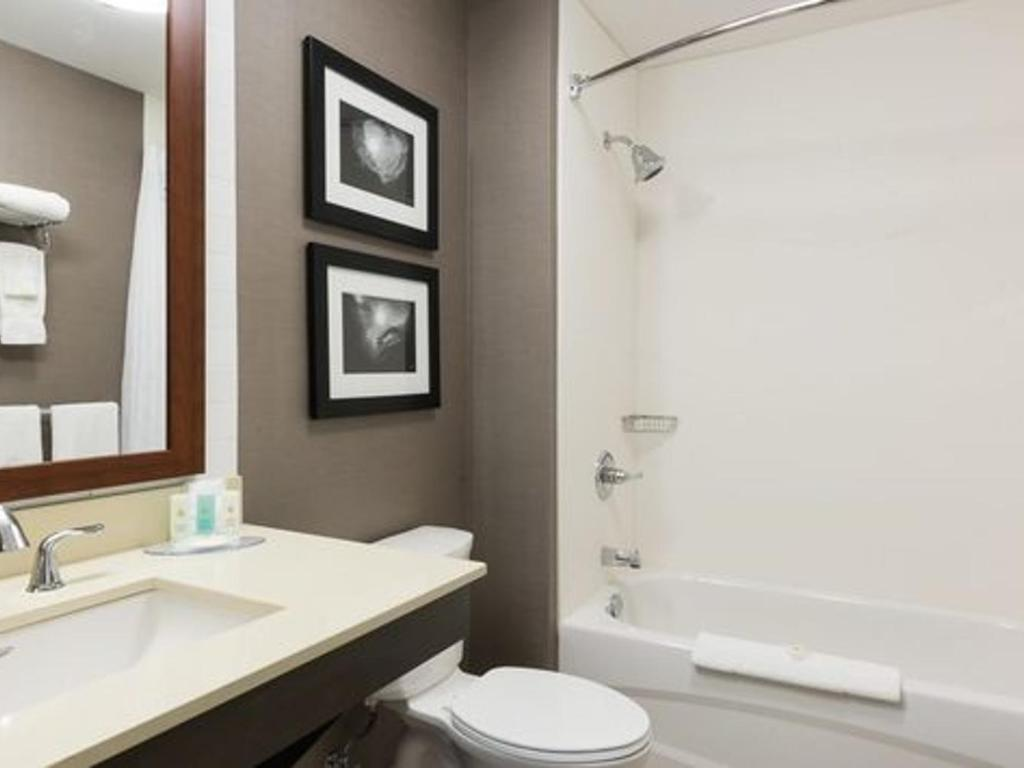 Comfort Inn & Suites Official Site | Hotels in Campbell River