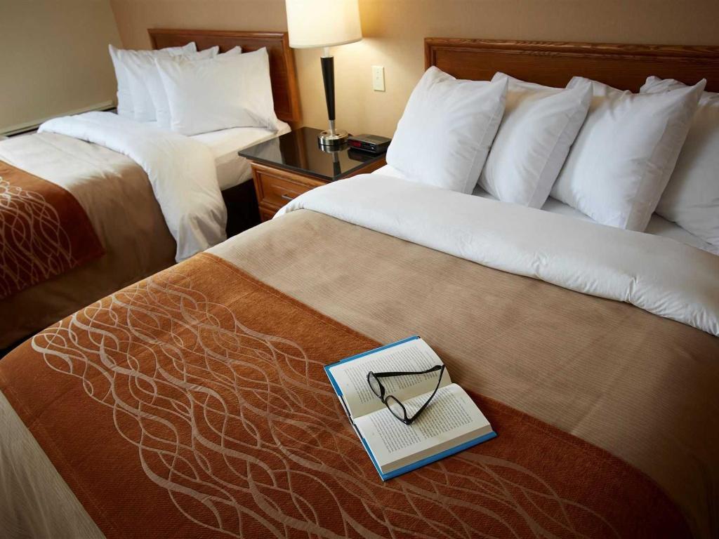 Chambre Confort 2 Lits Doubles 1er Etage
