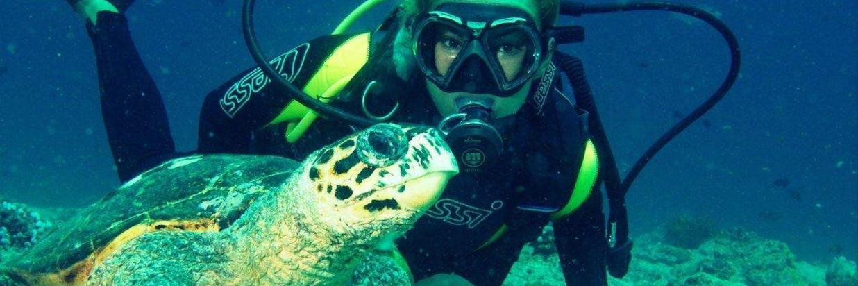 Turtle spotted during diving near Ukulhas.jpg