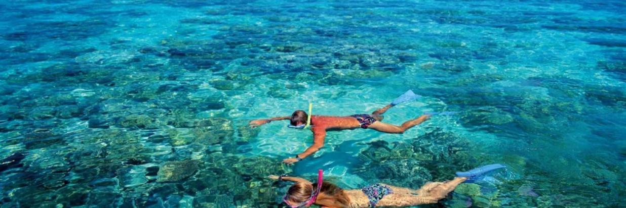 Guided snorkeling in ukulhas house reef at Coral Reef View Inn.jpg