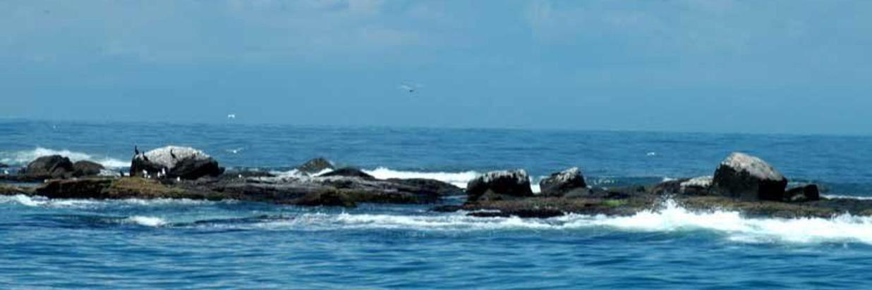 Ilha dos Lobos - Hotel Costa Dalpiaz - Torres - Rio Grande do Sul - Brasil.jpg
