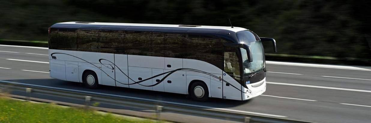 By Luxury Bus