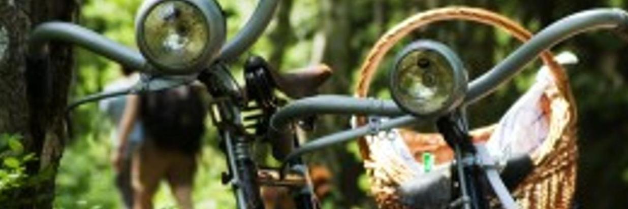 Euregio fiets 4-daagse Arrangement