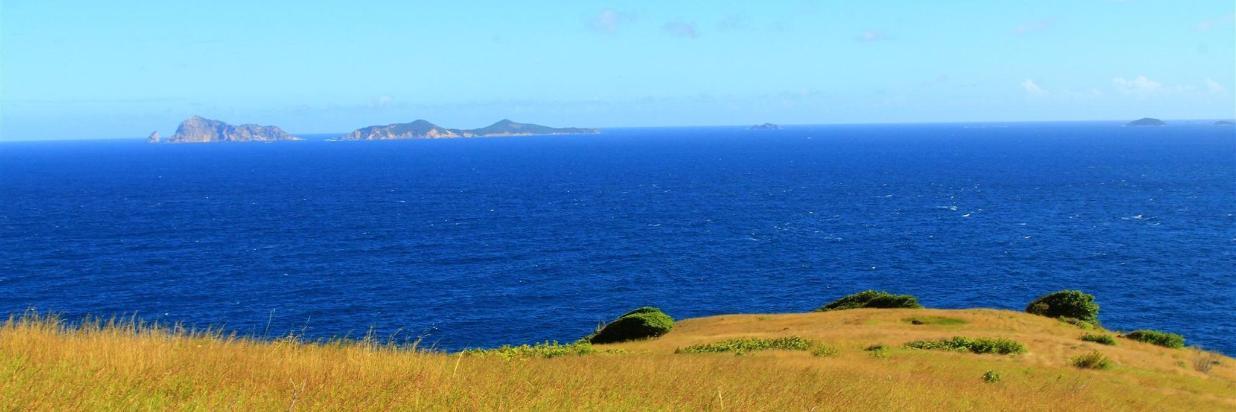 Beach or Hill~top