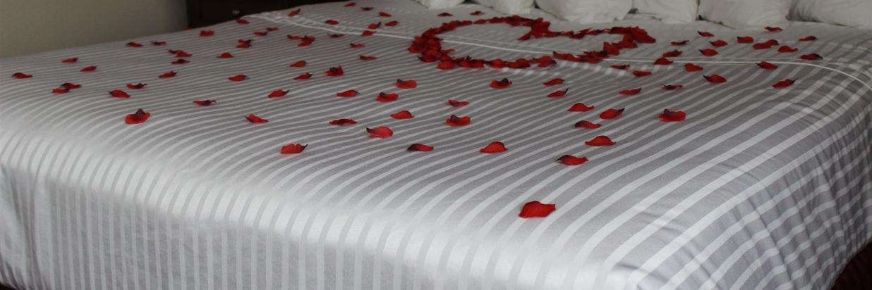 A Night of Romance