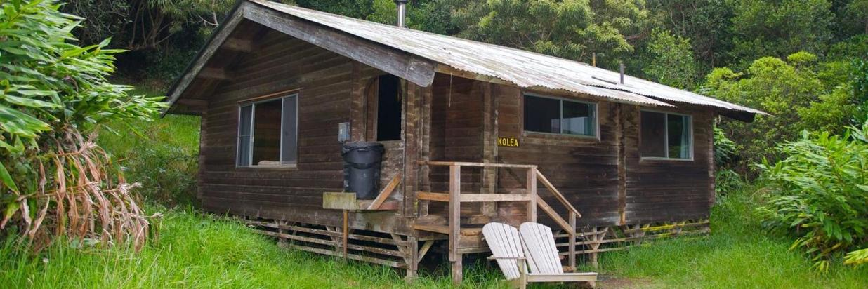 The Cedar Cabins