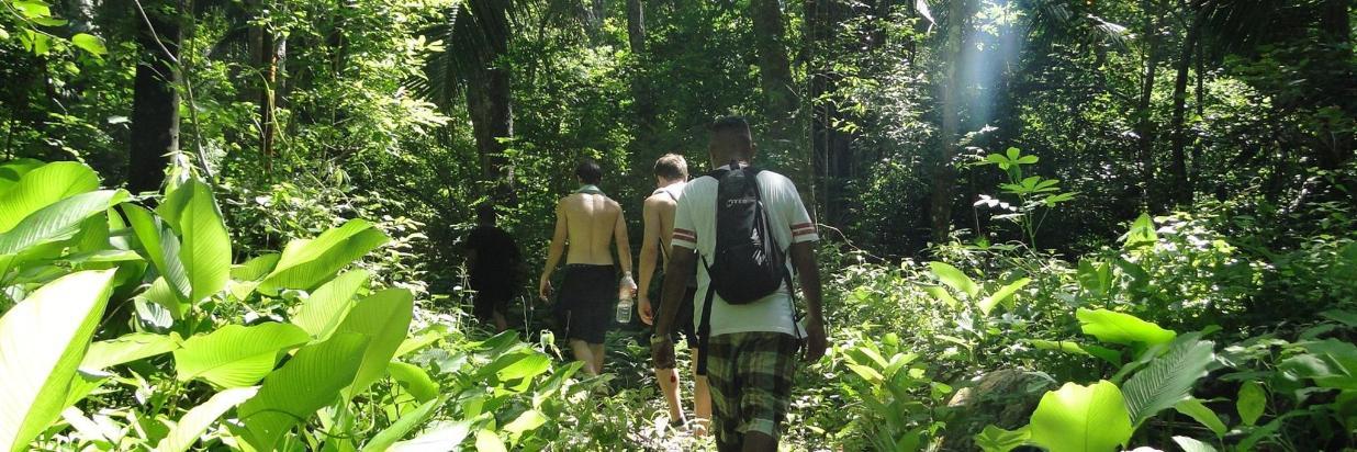 Nature Tours
