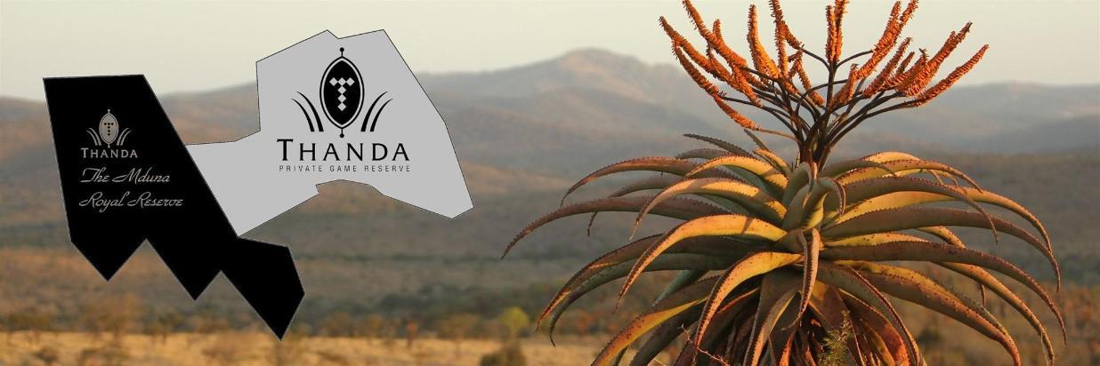 The Mduna Royal Reserve
