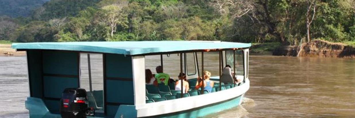 Crocodile Boat Tour