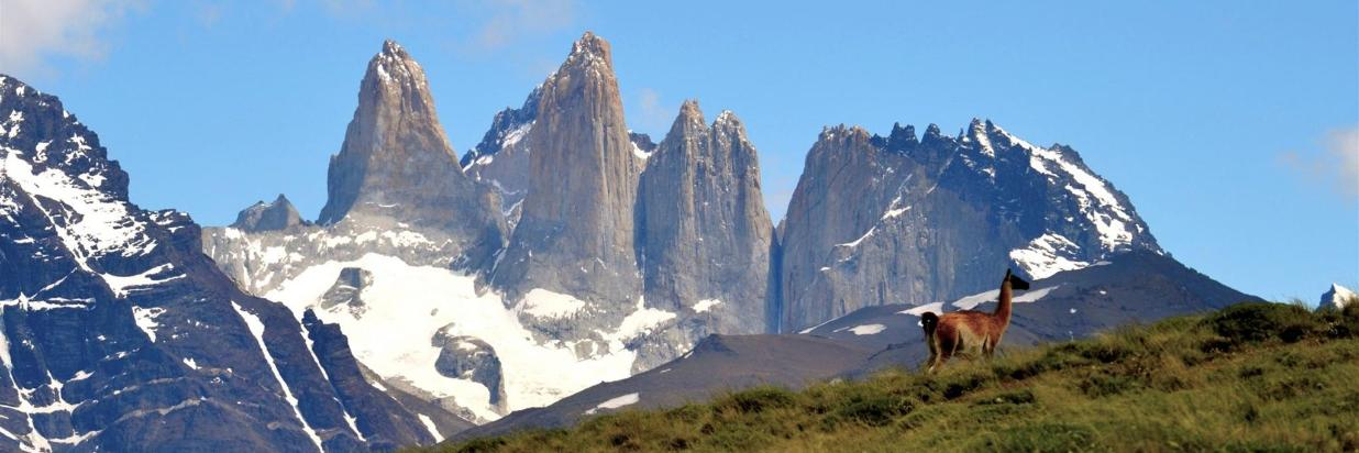 Only for Chilean, Torres del Paine at your reach