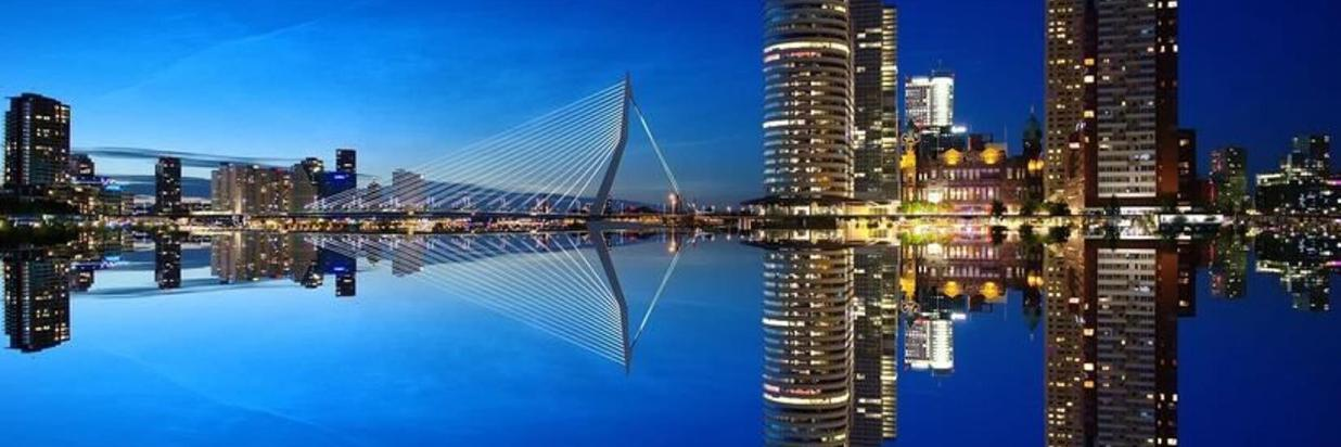 Why Rotterdam is the coolest