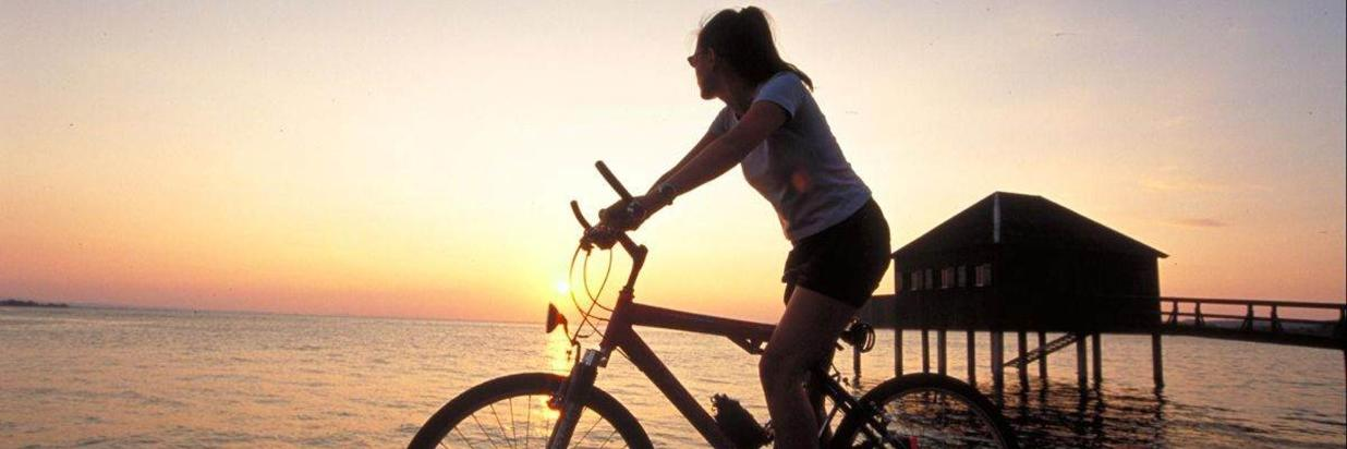 Bregenz mit dem Fahrrad erkunden