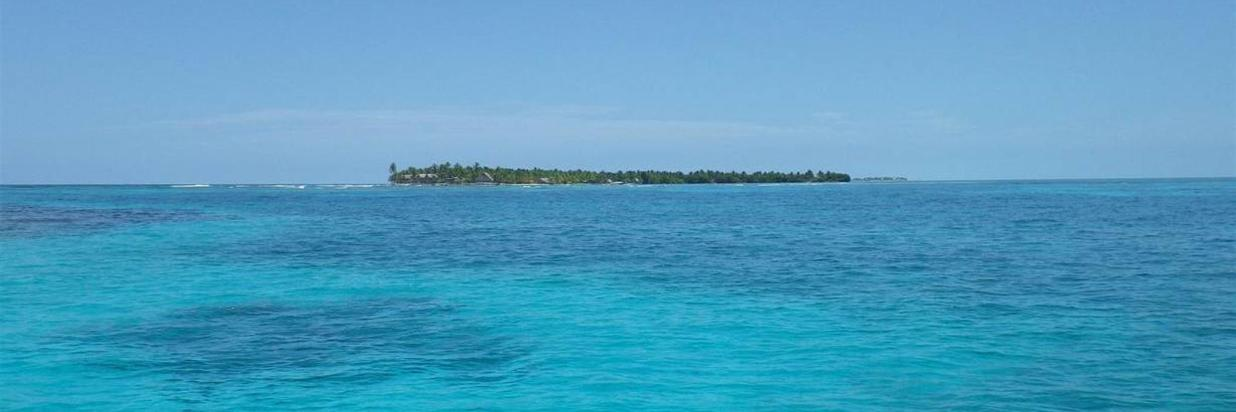 Bahamian Junkanoo in July