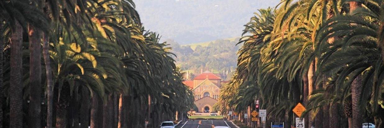 Pedaling Palo Alto