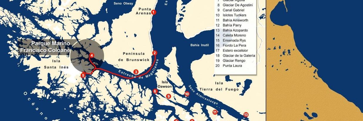 Navegacion y Ballenas