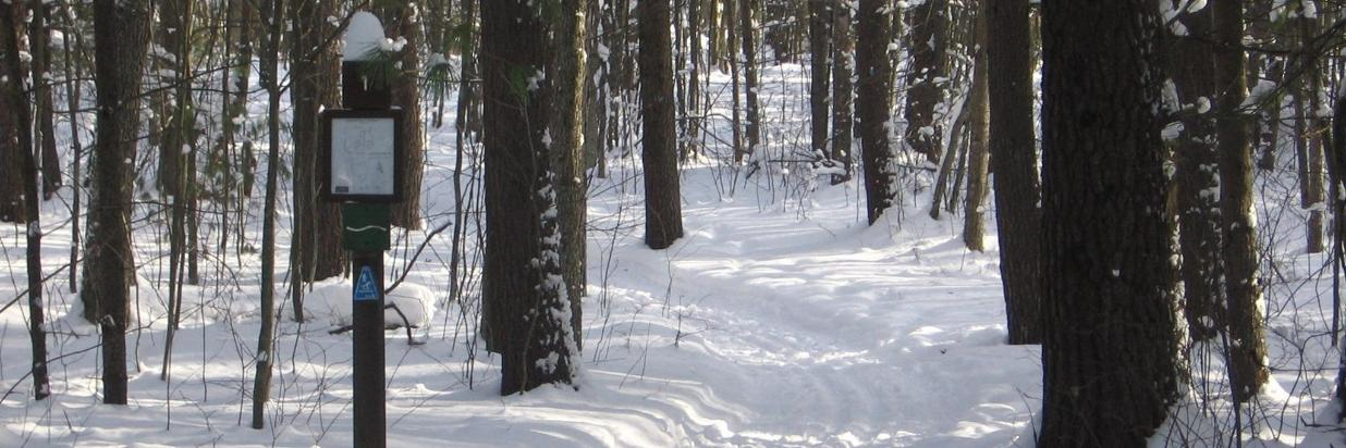 XC Skiers and Hikers