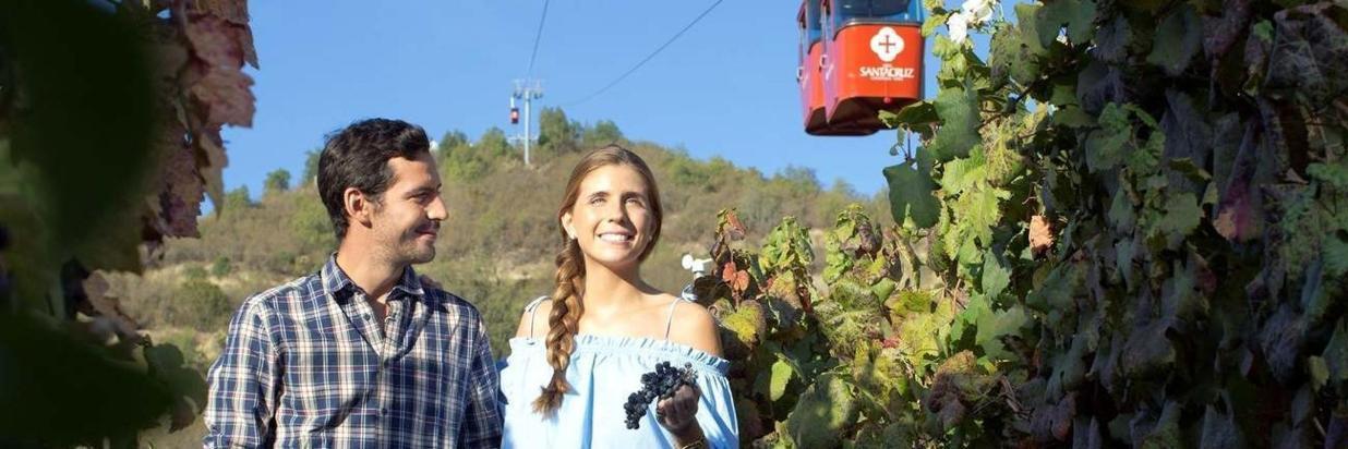 Los 5 mejores panoramas para tu próxima visita a viñas del Valle de Colchagua