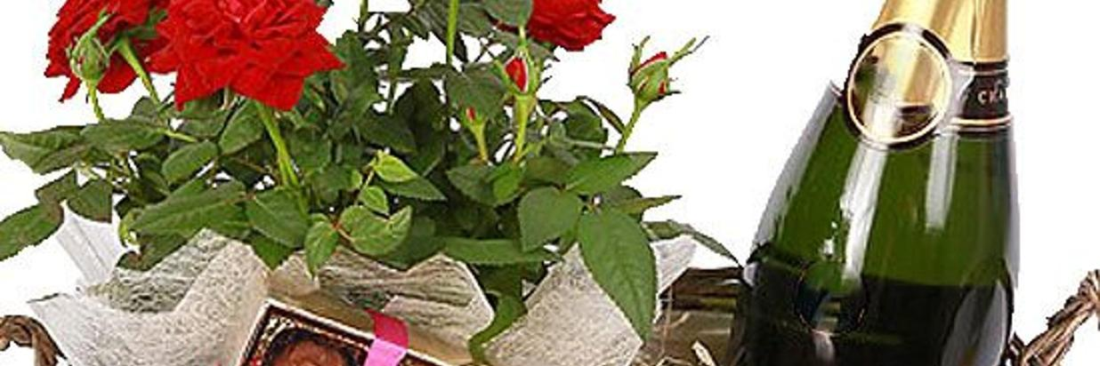 Romance Packages