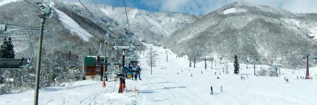 如何享受 [官方網站] 雅蓓絲塔白馬村度假酒店 - 日本阿爾卑斯