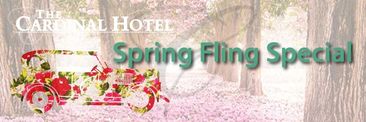 Spring Fling Special