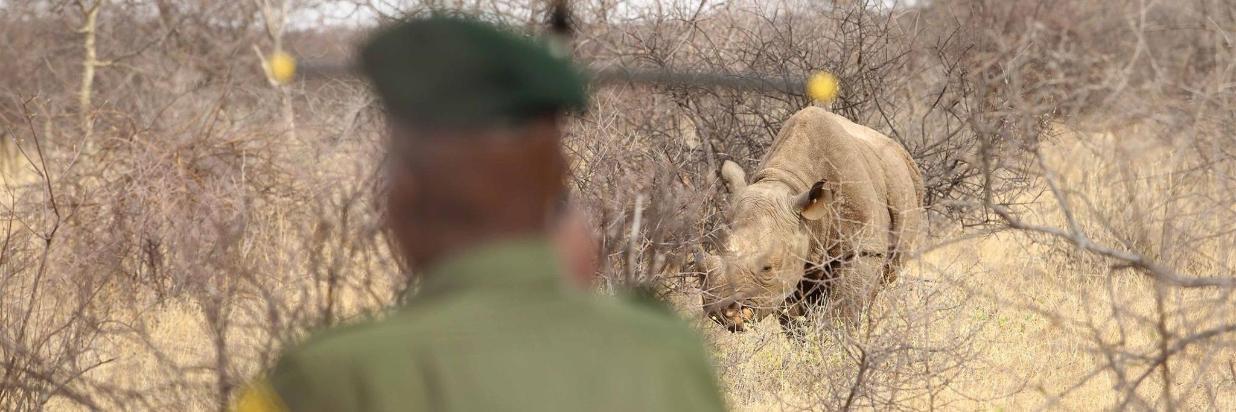 Saruni Safari Booking Procedures