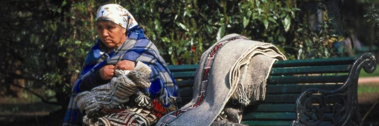 Mapuche People