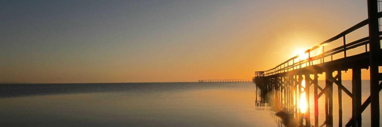 amanhecer-no-laranjal.jpg