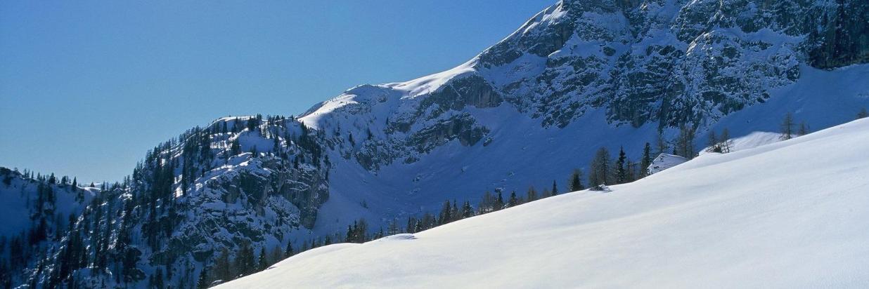 Alpbachtal in March - Early Bird 6 = 5