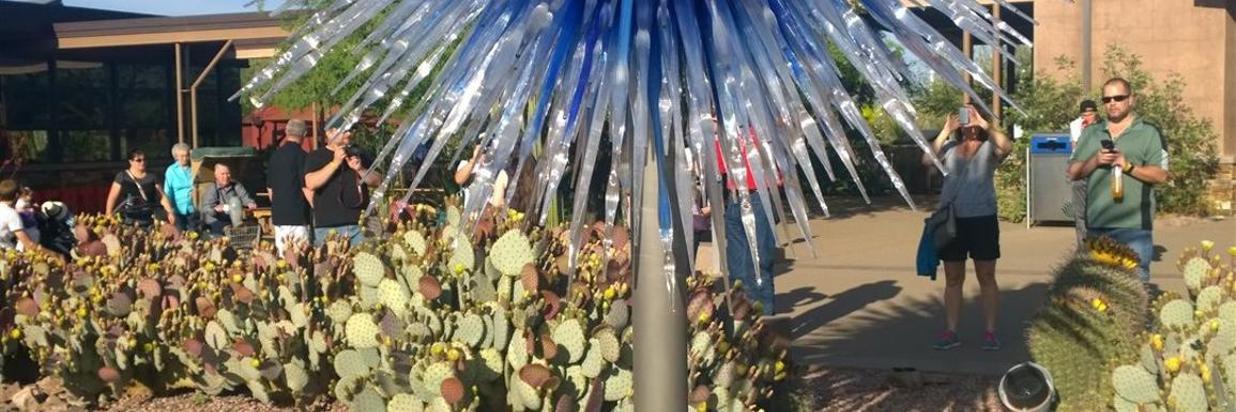 140323-chihuly-at-desert-botanical-garden-3.jpg
