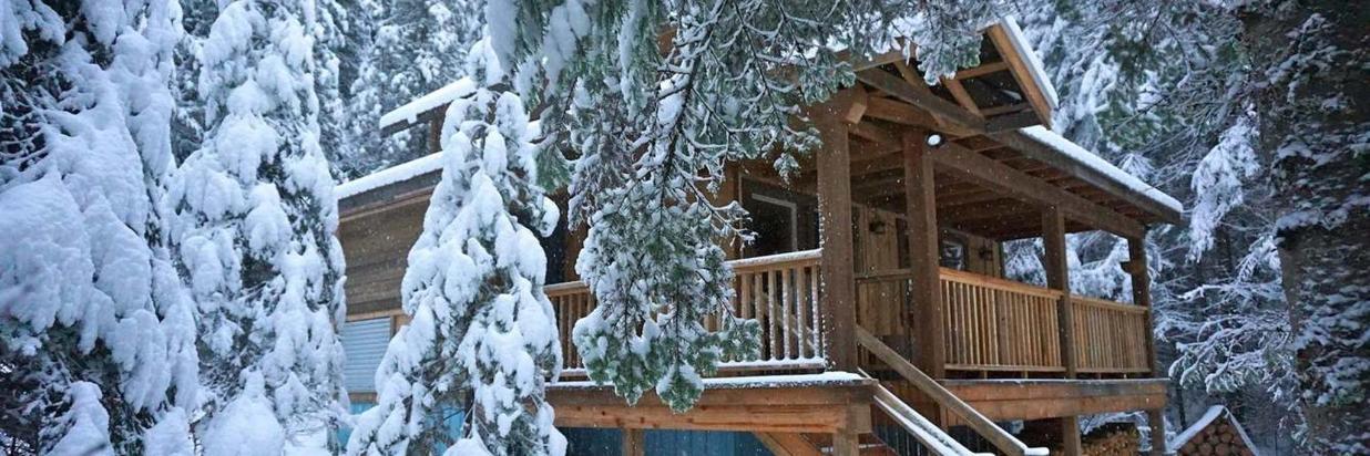 Nov. 17 - The Snow Has Arrived.