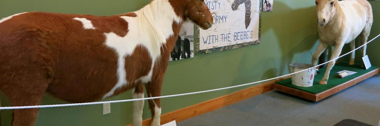 The Museum of Chincoteague