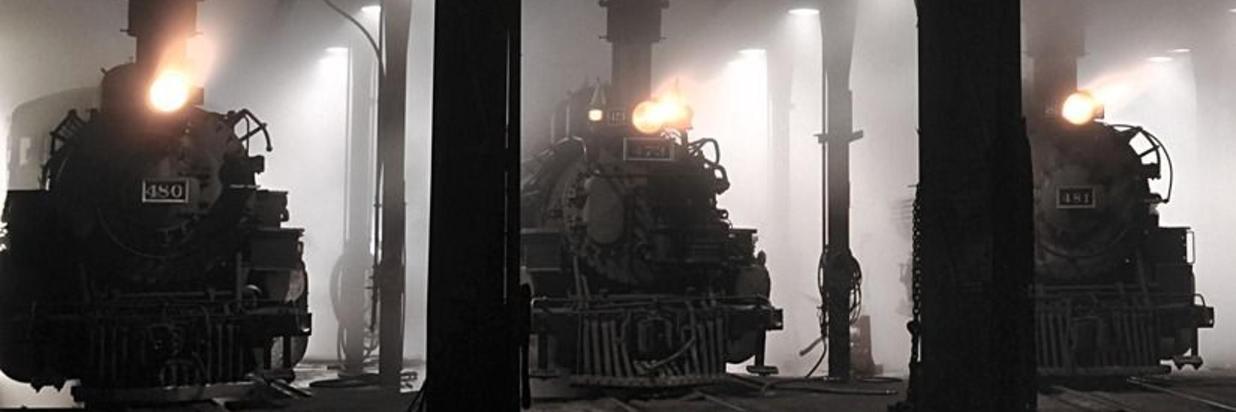 D&S TRAIN
