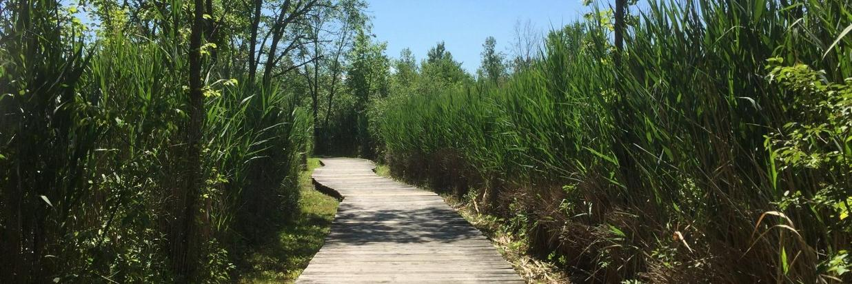 Enjoy Our Nature Trail