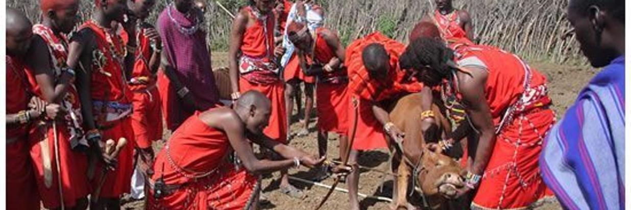 Maasai People