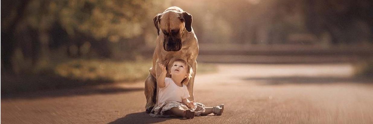 We Love Pets!!