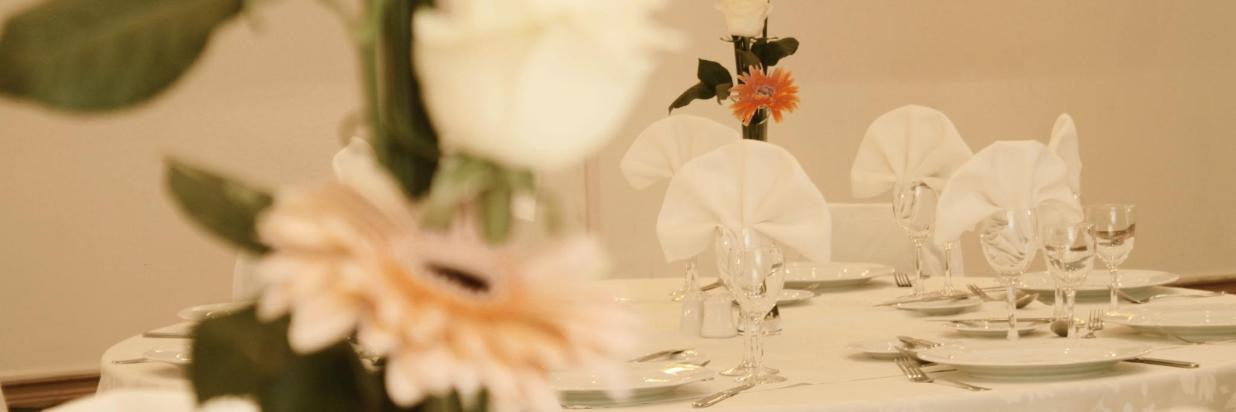 Celebra tu Matrimonio