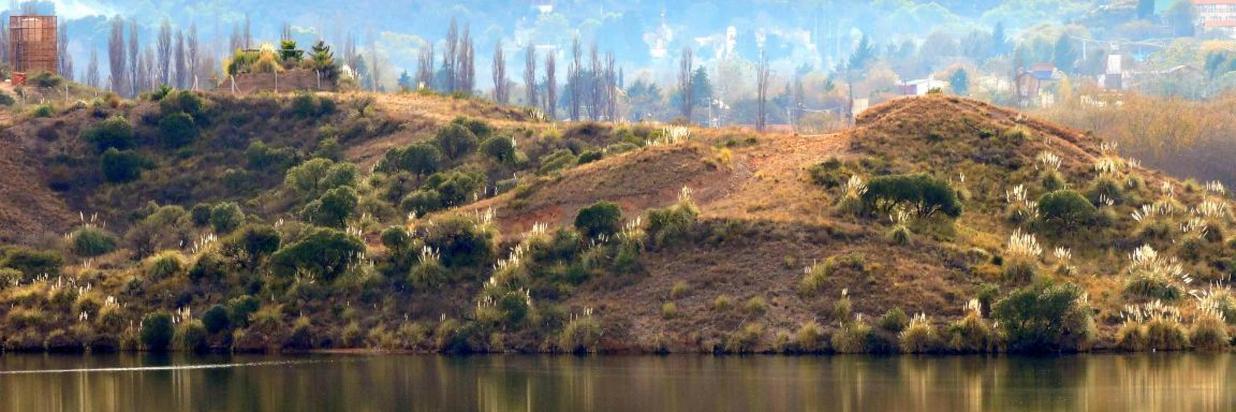TEMATICA-B-TITULO-MAæANA-DE-DOMINGO-Lag-Potrero-De-Los-Funes.jpg