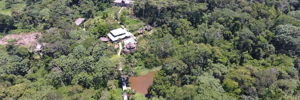 Ayahuasca Retreats|Shamanic Ceremonies near to quito Jungle