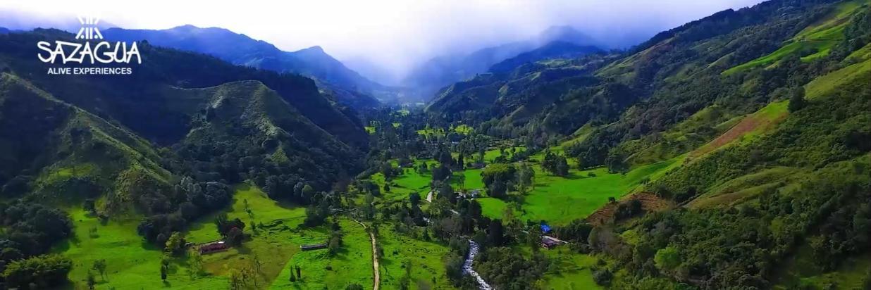 Valle del Cocora 1 Recorte.PNG