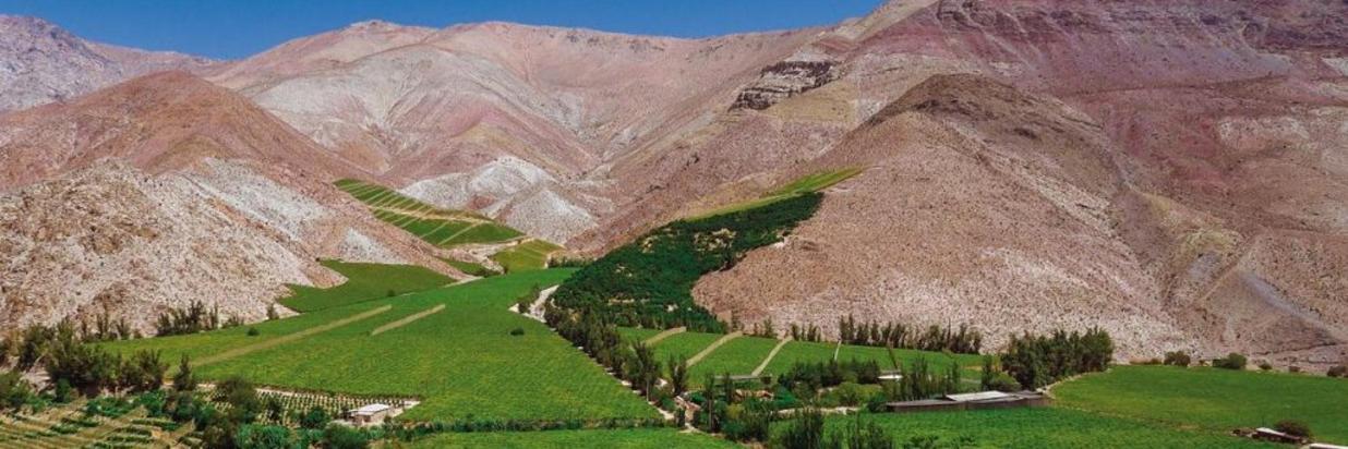 Valle-del-Elqui3-1200x767-990x556.jpg