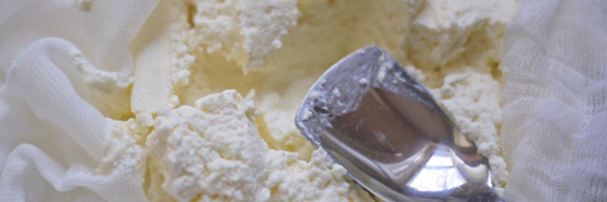 homemade-ricotta-OneHungryMama.jpg