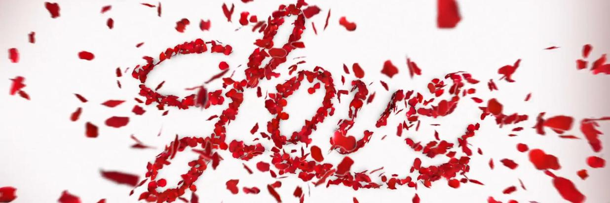 red-rose-petals-spell-love_4nmye6wq_l__F0002.png