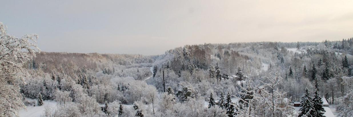 Ainavu krauja in winter