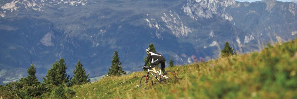 Gorsko-kolesarjenje-na-Golteh-1.jpg